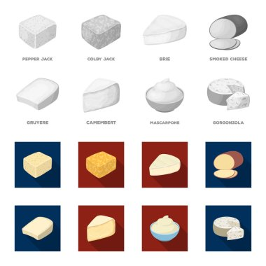 Gruyere, camembert, mascarpone, gorgonzola.Different types of cheese set collection icons in monochrome,flat style vector symbol stock illustration web.