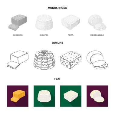 Mozzarella, feta, cheddar, ricotta.Different types of cheese set collection icons in flat,outline,monochrome style vector symbol stock illustration web.