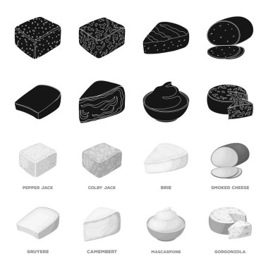 Gruyere, camembert, mascarpone, gorgonzola.Different types of cheese set collection icons in black,monochrome style vector symbol stock illustration web.