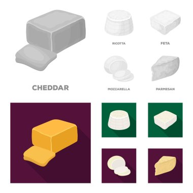 Mozzarella, feta, cheddar, ricotta.Different types of cheese set collection icons in monochrome,flat style vector symbol stock illustration web.
