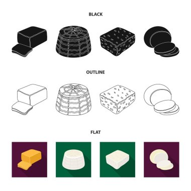 Mozzarella, feta, cheddar, ricotta.Different types of cheese set collection icons in black,flat,outline style vector symbol stock illustration web.