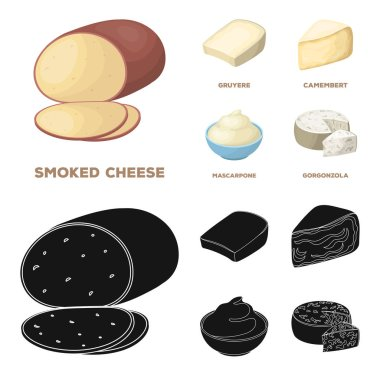 Gruyere, camembert, mascarpone, gorgonzola.Different types of cheese set collection icons in cartoon,black style vector symbol stock illustration web.