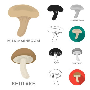 Poisonous and edible mushroom cartoon,black,flat,monochrome,outline icons in set collection for design. Different types of mushrooms vector symbol stock web illustration.