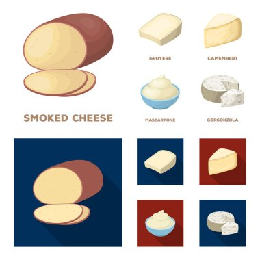 Gruyere, camembert, mascarpone, gorgonzola.Different types of cheese set collection icons in cartoon,flat style vector symbol stock illustration web.