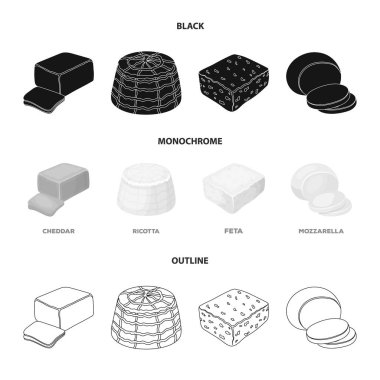 Mozzarella, feta, cheddar, ricotta.Different types of cheese set collection icons in black,monochrome,outline style vector symbol stock illustration web.
