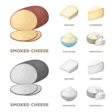 Gruyere, camembert, mascarpone, gorgonzola.Different types of cheese set collection icons in cartoon,monochrome style vector symbol stock illustration .