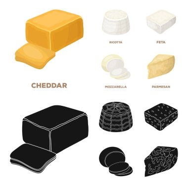 Mozzarella, feta, cheddar, ricotta.Different types of cheese set collection icons in cartoon,black style vector symbol stock illustration web.