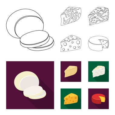 Parmesan, roquefort, maasdam, gauda.Different types of cheese set collection icons in outline,flat style vector symbol stock illustration web.