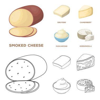 Gruyere, camembert, mascarpone, gorgonzola.Different types of cheese set collection icons in cartoon,outline style vector symbol stock illustration web.