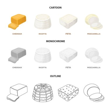 Mozzarella, feta, cheddar, ricotta.Different types of cheese set collection icons in cartoon,outline,monochrome style vector symbol stock illustration web.