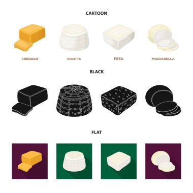 Mozzarella, feta, cheddar, ricotta.Different types of cheese set collection icons in cartoon,black,flat style vector symbol stock illustration web.