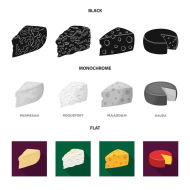 Parmesan, roquefort, maasdam, gauda.Different types of cheese set collection icons in black, flat, monochrome style vector symbol stock illustration web.