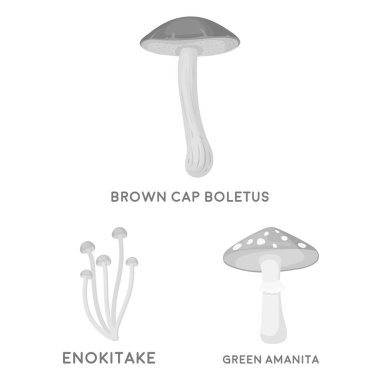 Poisonous and edible mushroom monochrome icons in set collection for design. Different types of mushrooms vector symbol stock web illustration.