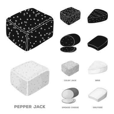 Brynza, smoked, colby jack, pepper jack.Different types of cheese set collection icons in black,monochrom style vector symbol stock illustration web.