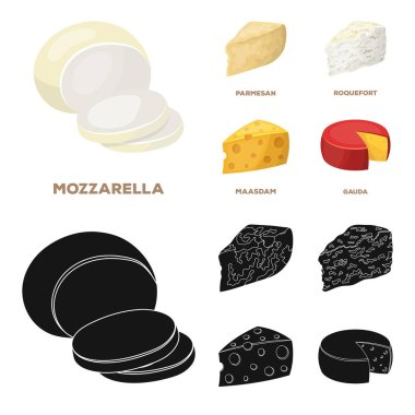 Parmesan, roquefort, maasdam, gauda.Different types of cheese set collection icons in cartoon,black style vector symbol stock illustration web.