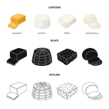 Mozzarella, feta, cheddar, ricotta.Different types of cheese set collection icons in cartoon,black,outline style vector symbol stock illustration web.