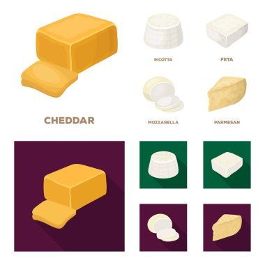 Mozzarella, feta, cheddar, ricotta.Different types of cheese set collection icons in cartoon,flat style vector symbol stock illustration web.