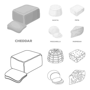 Mozzarella, feta, cheddar, ricotta.Different types of cheese set collection icons in outline,monochrome style vector symbol stock illustration web.