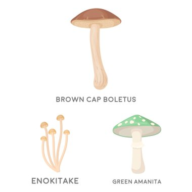 Poisonous and edible mushroom cartoon icons in set collection for design. Different types of mushrooms vector symbol stock web illustration.