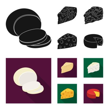 Parmesan, roquefort, maasdam, gauda.Different types of cheese set collection icons in black,flat style vector symbol stock illustration web.