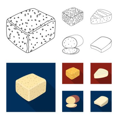 Brynza, smoked, colby jack, pepper jack.Different types of cheese set collection icons in outline,flat style vector symbol stock illustration web.