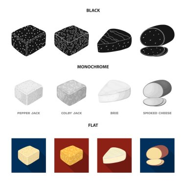 Brynza, smoked, colby jack, pepper jack.Different types of cheese set collection icons in black, flat, monochrome style vector symbol stock illustration web.