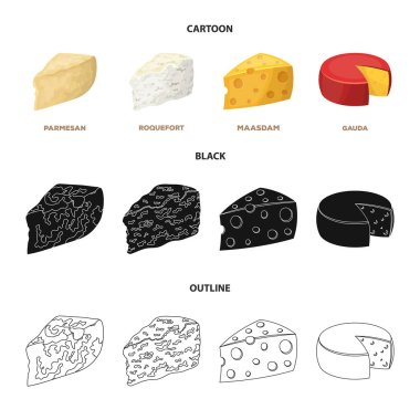 Parmesan, roquefort, maasdam, gauda.Different types of cheese set collection icons in cartoon,black,outline style vector symbol stock illustration web.