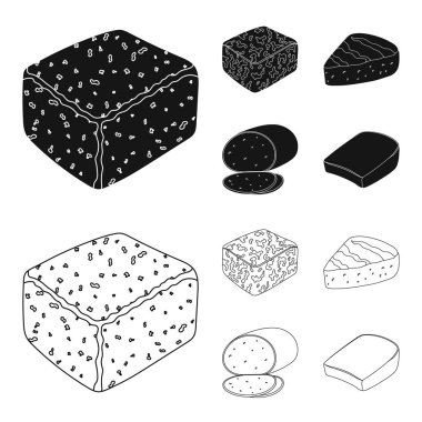 Brynza, smoked, colby jack, pepper jack.Different types of cheese set collection icons in black,outline style vector symbol stock illustration web.