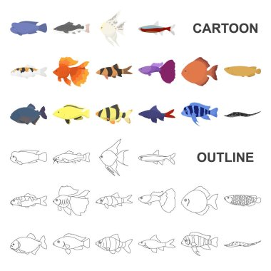 Different types of fish cartoon icons in set collection for design. Marine and aquarium fish vector symbol stock web illustration.