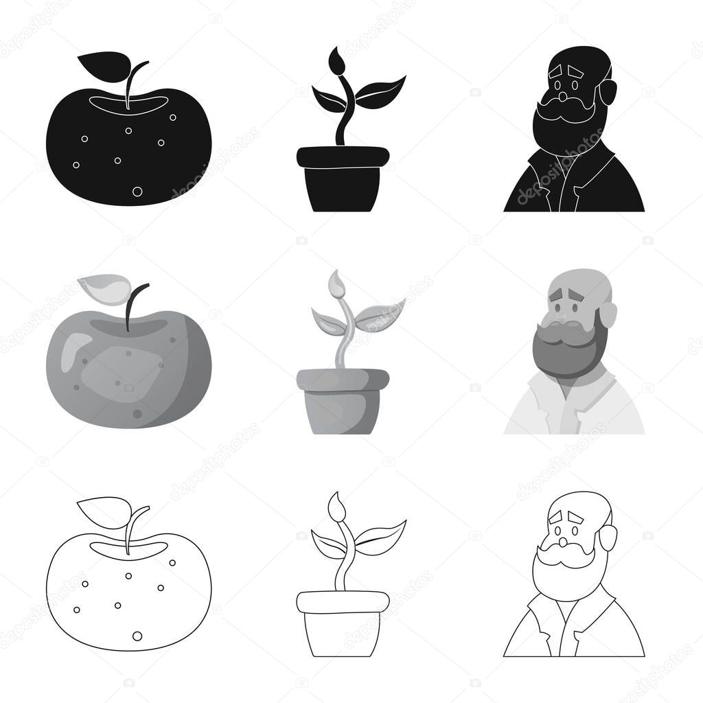Isolated object of  and  logo. Set of  and  vector icon for stock.