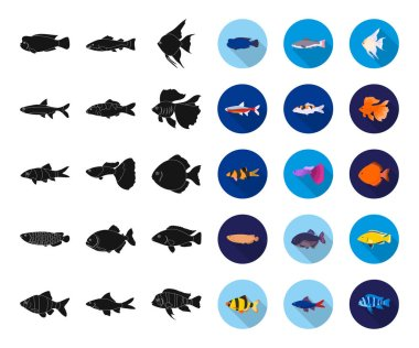 Different types of fish black,flat icons in set collection for design. Marine and aquarium fish vector symbol stock web illustration.