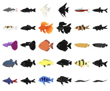 Different types of fish cartoon,black icons in set collection for design. Marine and aquarium fish vector symbol stock web illustration.