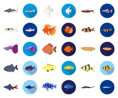 Different types of fish cartoon,flat icons in set collection for design. Marine and aquarium fish vector symbol stock web illustration.