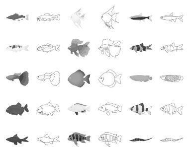 Different types of fish monochrome,outline icons in set collection for design. Marine and aquarium fish vector symbol stock web illustration.