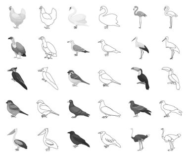 Types of birds monochrome,outline icons in set collection for design. Home and wild bird vector symbol stock web illustration.