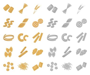 Types of pasta cartoon,mono icons in set collection for design. Figured macaroni for eating vector symbol stock web illustration.