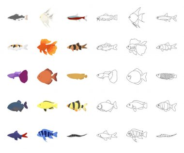 Different types of fish cartoon,outline icons in set collection for design. Marine and aquarium fish vector symbol stock web illustration.