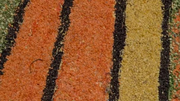 A Coronavirus pandémiát ábrázoló kép magvakkal és színes lencsékkel.