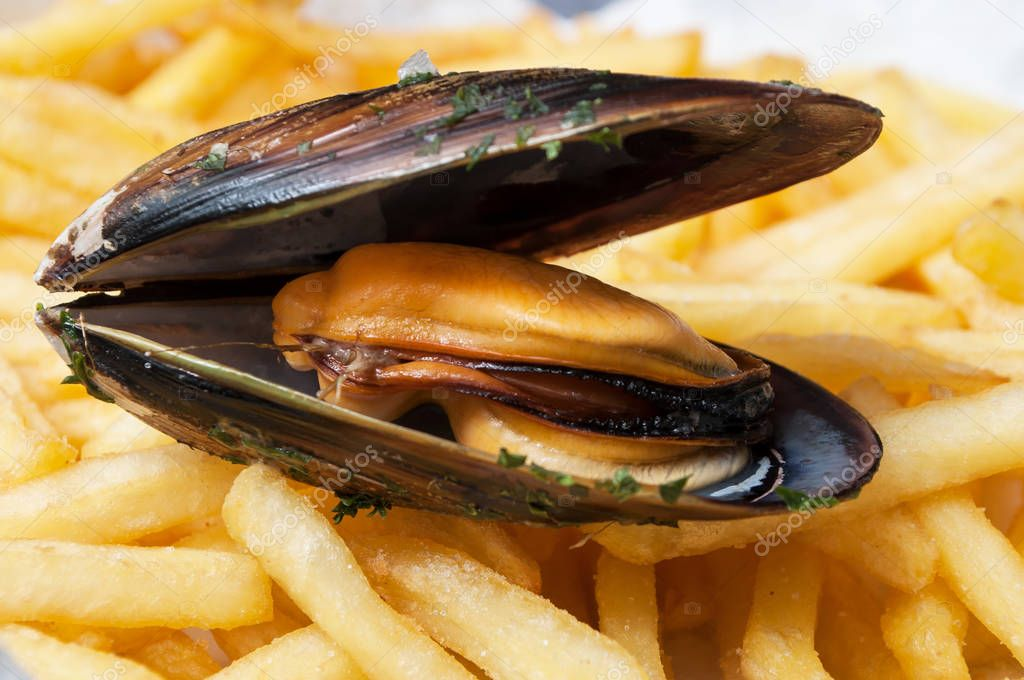 closeup of mussel on french fries background at restaurant