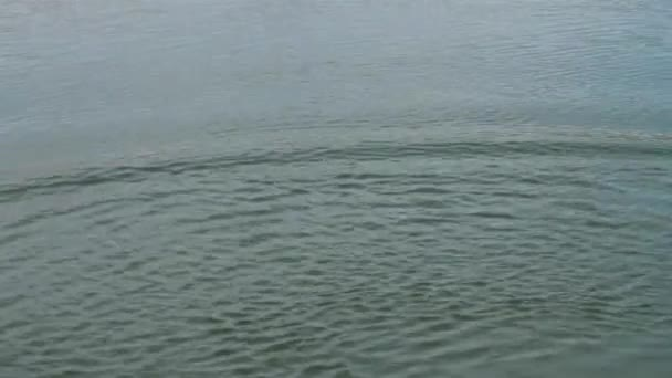 soft wave in lake