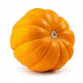 Pomerančová miniaturní dýně izolované na bílém pozadí