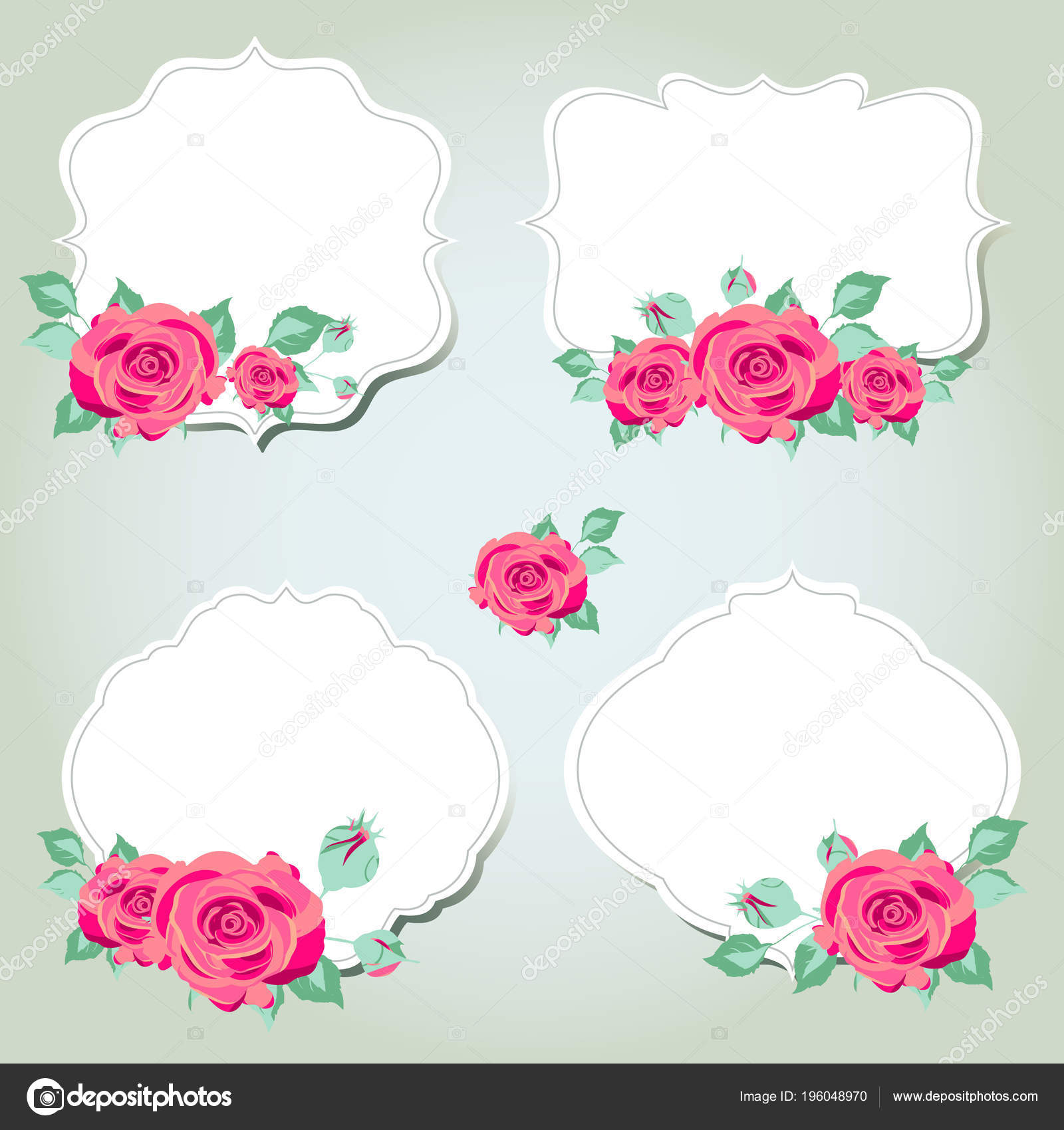 Hermosas Flores Color Rosa Con Los Marcos Blancos Sobre Fondo ...