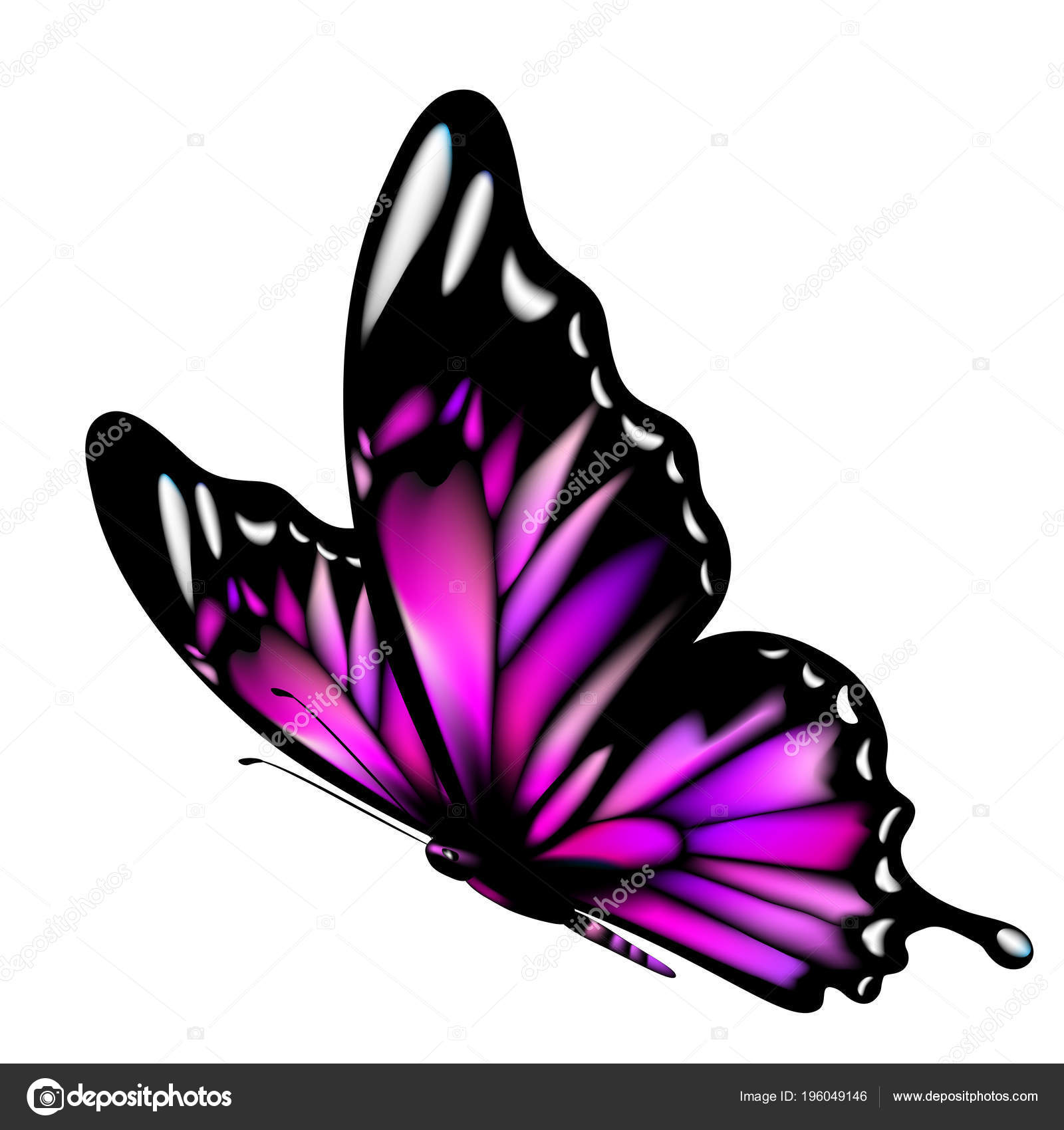 purple butterfly isolated white background vector illustration ⬇ vector  image by © aboard | vector stock 196049146  depositphotos