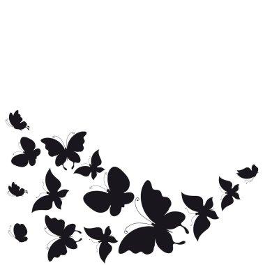 """Картина, постер, плакат, фотообои """"Почтовая карточка с коллекцией черных полет бабочки, изолированные на белом фоне, вектор, Иллюстрация"""", артикул 196047224"""