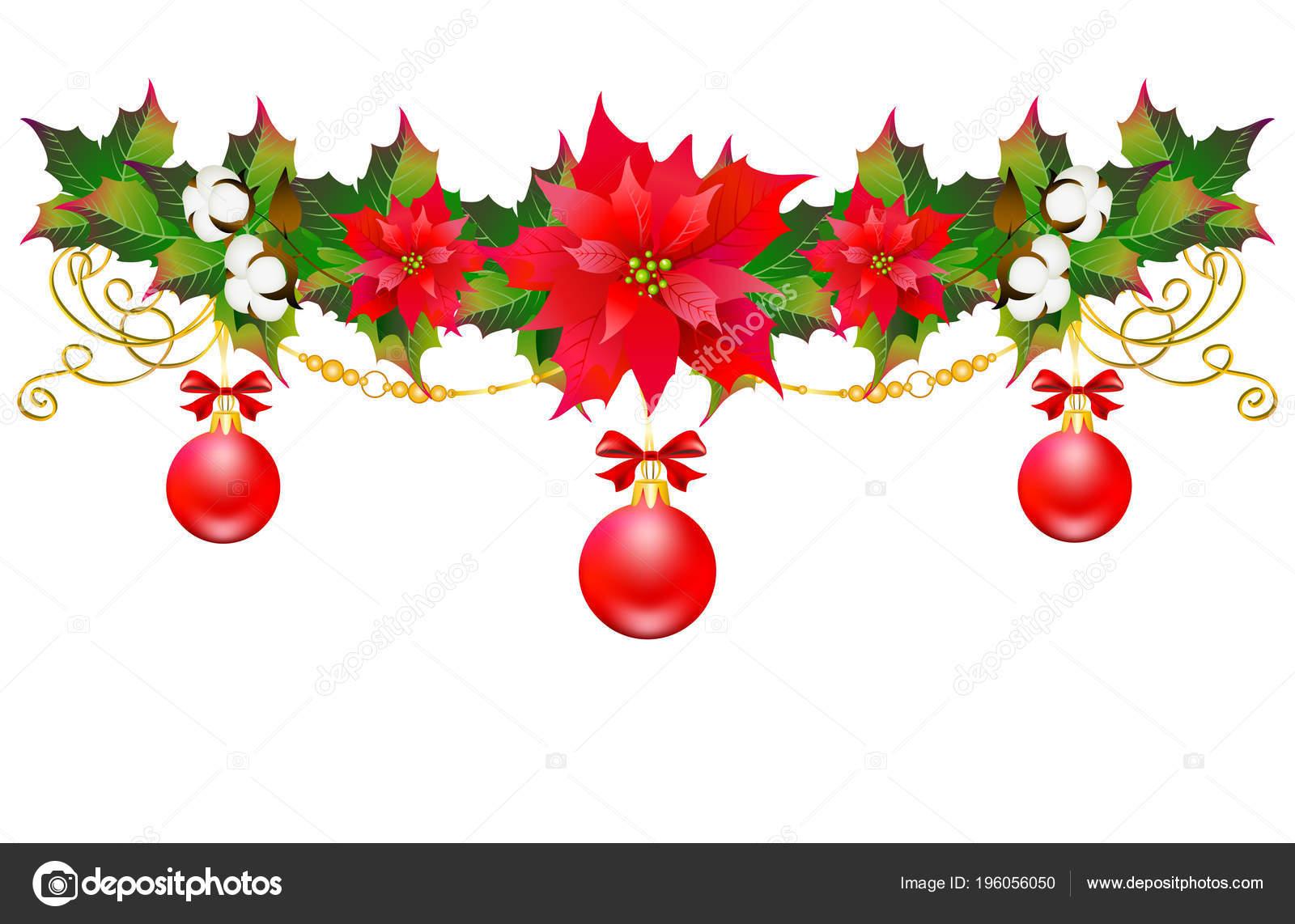 Guirnalda Navidad Con Flor Pascua Algodon Flores Aisladas Sobre - Guirnalda-navidad