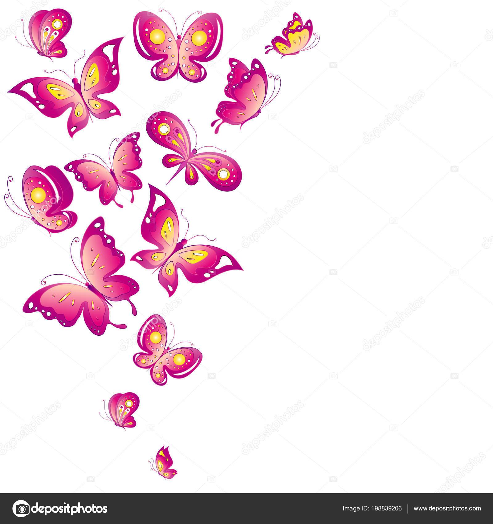 Cartolina Postale Con Collezione Rosa Volare Farfalle Isolate Sfondo