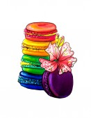 Beautiful flowers with macarons, hand drawn, isolated on a white