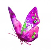 Fotografie beautiful butterfly, watercolor, isolated on a white