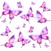 splendide farfalle, acquerello, isolato su sfondo bianco