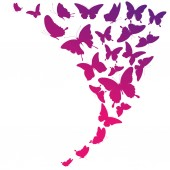 růžový zadávací motýli izolovaných na bílém pozadí